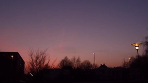 File:Starling cloud.webm