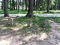 Stelmužė 32295, Lithuania - panoramio (11).jpg
