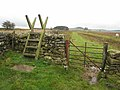 Stile on Hadrian's Wall National Trail - geograph.org.uk - 1020186.jpg