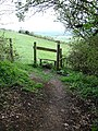 Stile on the North Downs Way - geograph.org.uk - 162430.jpg