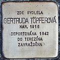 Stolperstein für Gertruda Töpferova.jpg