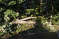 Storm Damage Montgomery County Maryland June 29 2012 (7473950908).jpg