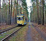 Straßenbahn Woltersdorf, Tram auf Waldstrecke.jpg
