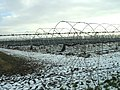 Strawberry beds in winter - geograph.org.uk - 333766.jpg