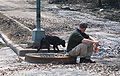Stray dog approaching rescue worker in New Orleans following Katrina.jpg