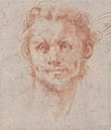Study of a Man's Head MET 1998.361.jpg