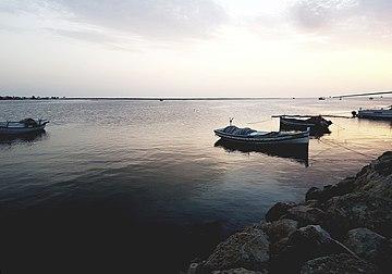 Sunset island Kerkenna 02.jpg
