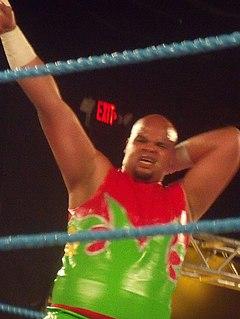 Monster Pain Puerto Rican professional wrestler