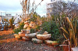 Ta' Ċieda Tower - Vegetation, dumping and dilapidation at the site of Ta' Cieda Tower