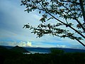 Taal view under the Tree.jpg
