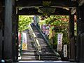 Taisho-in Gate - panoramio.jpg