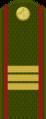 Tajikistan-Army-OR-6.png