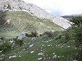 Tajo del Fraile (7232292616).jpg