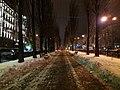 Tarasa Shevchenka Boulevard (2018.12.15).jpg