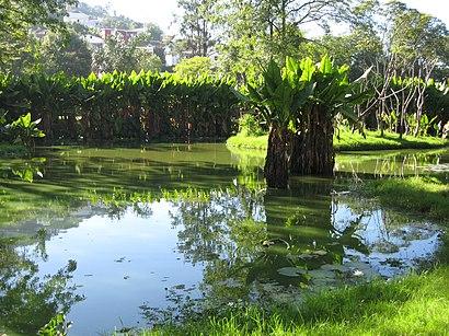How to get to Parc Botanique et Zoologique de Tsimbazaza with public transit - About the place