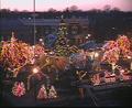 Taunton Christmas City.PNG