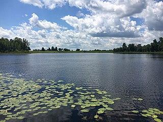 Edwards Township, Michigan Township in Michigan, United States