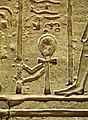 Temple Reliefs at Kom Ombo (V).jpg