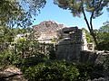 Temple de diane 06.JPG