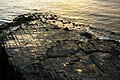 Tessellated Pavement post Sunrise.jpg