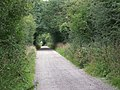The Old Shaston Drove, Fovant Down - geograph.org.uk - 1452025.jpg