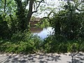 The Pond at Pond Farm - geograph.org.uk - 439925.jpg