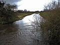 The River Bure - geograph.org.uk - 728335.jpg