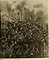 The people's war book; history, cyclopaedia and chronology of the great world war (1919) (14778864031).jpg