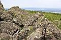 The top of Kachkanar Mountain-5.jpg