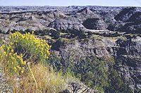 Theodore Roosevelt National Park.jpg