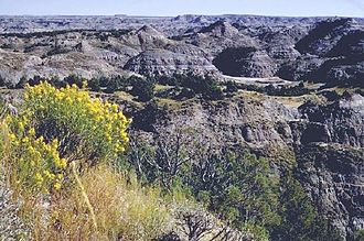 Battle of Killdeer Mountain - After the battle, Sully pursued the Sioux through the difficult terrain of the Badlands of North Dakota near present-day Theodore Roosevelt National Park.