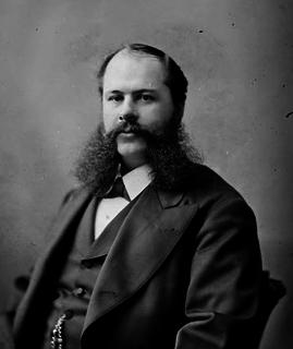 Thomas Robert McInnes Canadian politician