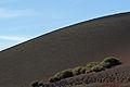 Timanfaya National Park IMGP1826.jpg