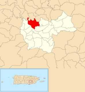 Toíta, Cayey, Puerto Rico Barrio of Puerto Rico