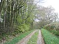 Track, to Bucehayes Farm - geograph.org.uk - 1272322.jpg