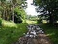 Track to Oxnam from Mossburnford - geograph.org.uk - 497179.jpg