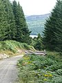 Track with a view of Loch Tummel - geograph.org.uk - 1440781.jpg