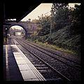 Train - panoramio (26).jpg