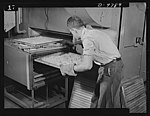 Trays of blanched potatoes are placed on racks which will be rolled into the tunnel-type dehydrator 8b09642v.jpg