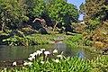 Trebah Gardens - geograph.org.uk - 823362.jpg