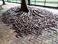 Tree growing on pavement in Hong Kong.JPG