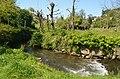 Trilho do rio Febro VIII (33097956594).jpg