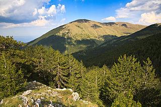 Ali Botush Reserve