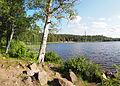 Tuomiojärvi5.jpg