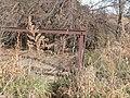 Turkey Creek Bridge 3.jpg