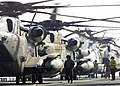 US Navy 030424-N-2819P-042 A line of CH-53E Super Stallions from Marine Helicopter Light Squadron (HMH-464).jpg