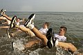 US Navy 040722-N-5526M-005 Naval Sea Cadets take part in a rigorous exercise routine while participating in Diver-Explosive Ordnance Disposal (EOD) Special Operations Program training at the Naval Amphibious Base Little Creek N.jpg