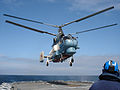 US Navy 050607-N-0000L-001 A Russian KA-27 helicopter assigned to the Russian destroyer RFS Natoychiviy (DD 610) lands aboard the British Royal Navy frigate HMS Sutherland (F 81) during Baltic Operations (BALTOPS) 2005.jpg