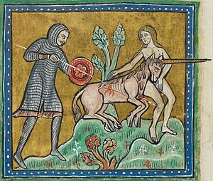 Rochester Bestiary - Detail of a miniature of a unicorn, tamed by a virgin and being killed by a hunter; folio 10v.