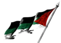 United Arab Flag-transparent.png